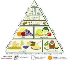 ultimate human performance food pyramid maxwellhipo u0027s soup