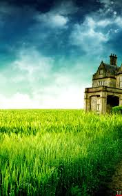 green place field beautiful samsung galaxy note wallpapers hd