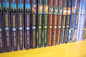 copies of the warrior series partners in literacy