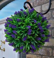 Potted Plant Ideas For Patio by Best 20 Hanging Baskets Ideas On Pinterest Hanging Flower