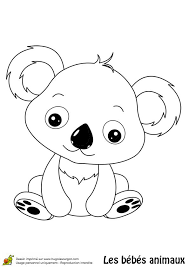 koala bear coloring page 506 best coloring pages images on pinterest drawings