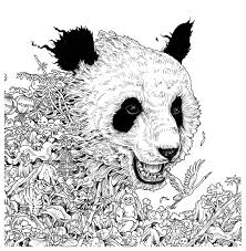 Turn Pictures Into Coloring Pages App Imagimorphia An Extreme Coloring And Search Challenge Kerby