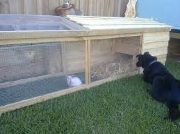 Rabbit Hutches And Runs Bing Image Like The Idea For A Bunny Run Better For Them To Have