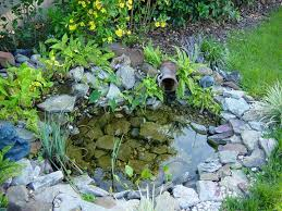 love this water feature they made a