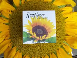 sunflower seed wedding favors sunflower seeds garden kit sunflower seed wedding favor