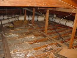hillsborough county electrician electrical contractor