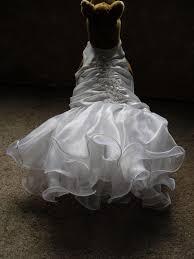 dog wedding dress chiffon dresses bridesmaid dresses dogs