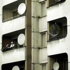 vertical gardens for birds urban gardens
