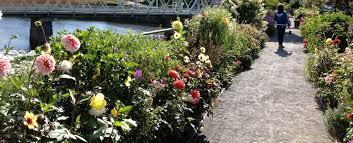 the bridge of flowers in massachusetts fine gardening