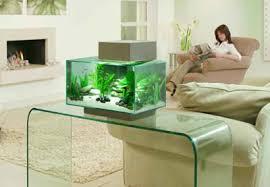 designer aquarium fluval edge aquarium offers style in a box
