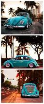 best 25 classic vw beetle ideas on pinterest bug car