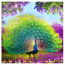 compare prices on peacock decorations for home online shopping