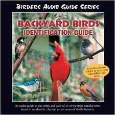 bird identification audio guide cds peterson birding field guides