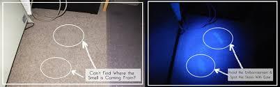 can a black light detect 5 leds urine detection black light torch view uv black flashlight