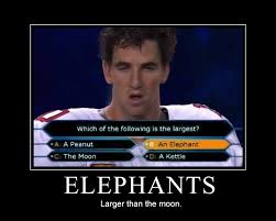 i made a parody of eli manning face combined with the elephant