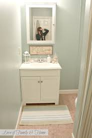 Paint Ideas For Bathroom Walls 4 Cheap Ideas For Updating Your Bathroom Walls Hort Decor