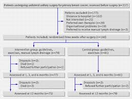 effect of manual lymph drainage in addition to guidelines and