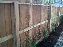 fun use of welded wire as a trellis projects ravenscourt