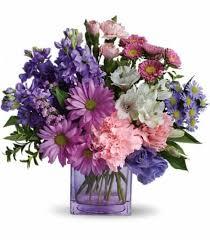flowers for birthday birthday flowers for november chrysanthemums