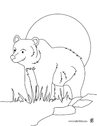 grizzly bears images of photo albums grizzly bear coloring pages