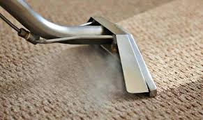 Clean Area Rugs Area Rug Cleaning Chicago Carpet Cleaning Web Design Company