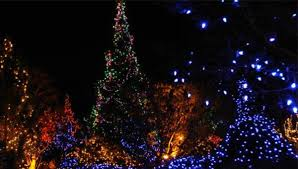 christmas tree lighting milwaukee five great places for holiday light shows around milwaukee