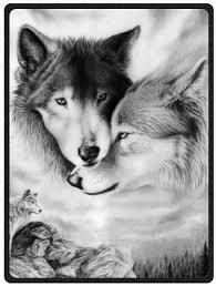 amazon com black and white wolf plush throw blanket travel blanket