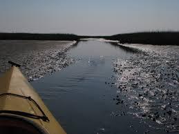 Nauset Marsh Cape Cod - nauset marsh u2013 eastham cape cod paul samson u0027s kayaking blog