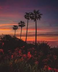 San Diego Landscape by Dreamlike Landscapes Of San Diego By Alec Basanec Inspiration