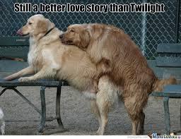 Still A Better Lovestory Than Twilight Meme - still a better love story than twilight by brokeninsanityxx meme