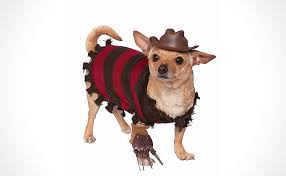 pet costumes 55 cool pet costumes for dogs of all sizes dog costume ideas