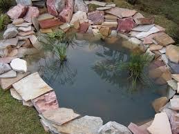 Decorative Pond 20 Impressive Diy Water Feature And Garden Pond Ideas