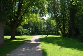 free images landscape tree nature forest path pathway