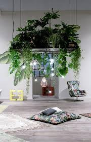 gorgeous design beautiful indoor plants ideas best ideas about