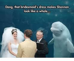 Bridesmaids Meme - dang that bridesmaid s dress makes shannon look like a whale