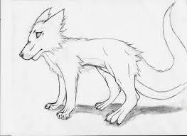 simple wolf drawing tutorial