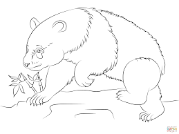 panda bear coloring page free printable coloring pages