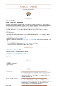 Professional Highlights Resume Examples by Design Director Resume Samples Visualcv Resume Samples Database