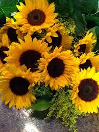 sunflower bouquet summer sunflower bouquet 1 dozen bee flowers vancouver