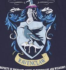 navy harry potter ravenclaw team quidditch shirt