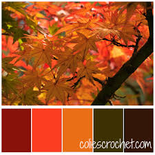 fall color pallette fall foliage color palette colies crochet idolza
