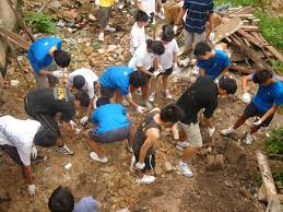 service learning wikipedia