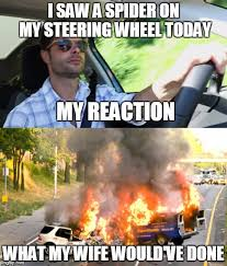 I Saw A Spider Meme - i saw a spider on my steering wheel today my reaction what my wife