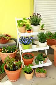 balcony gardening with containers