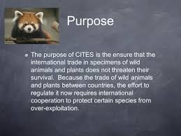 convention on international trade in endangered species cites
