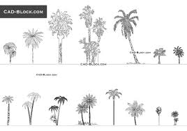 palm trees cad blocks free download