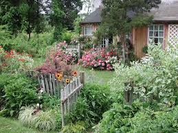 beautiful cottage flower garden french cottage garden flowers