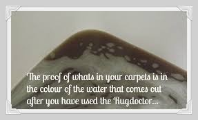Doctor Rug Whats In Your Carpets Rugdoctor Review Bloggomy