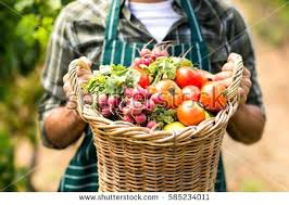 how to make fruit baskets basket of fruits and vegetables uploaded 2 months ago how to