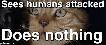 Cat Alien Meme - pokeme meme generator find and create memes